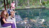 Feeding the fish in Ubud