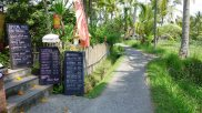outer Ubud. A bit like Pai.