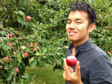 First time picking apples.