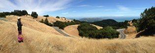 Our Mt. Tamalpais picnic spot.