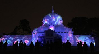 the Conservatory of Flowers lit up for the summer of love 50th anniversary in Golden Gate Park, SF