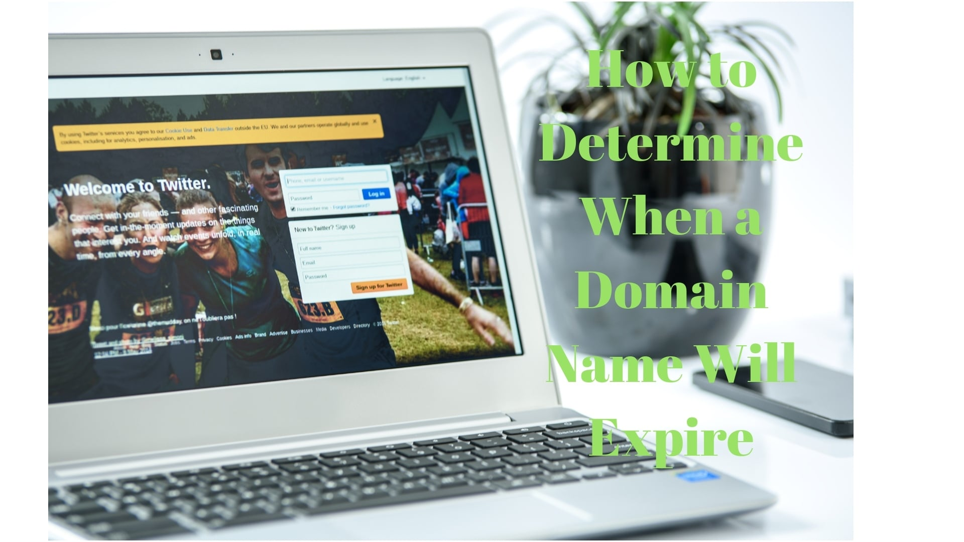 How to Determine When a Domain Name Will Expire 29