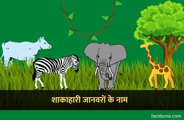 15 शाकाहारी जानवरों के नाम हिंदी इंग्लिश में – Herbivorous Animals Names in Hindi