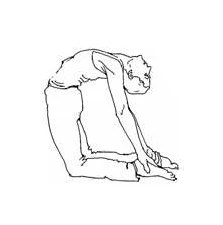 This image has an empty alt attribute; its file name is ushtrasana.jpg