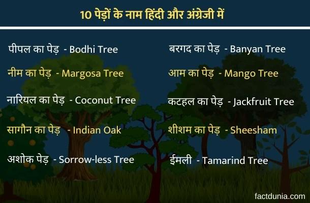 tree names in hindi english- ped ke naam