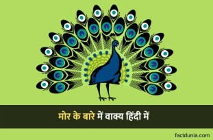 10-lines-about-peacock-in-Hindi