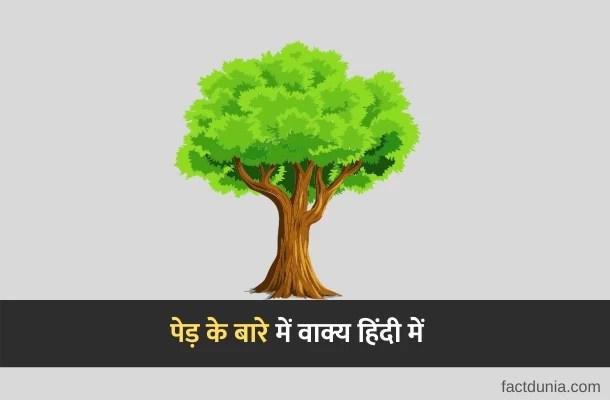 पेड़ के बारे में पाँच वाक्य – 10 Lines About Tree in Hindi