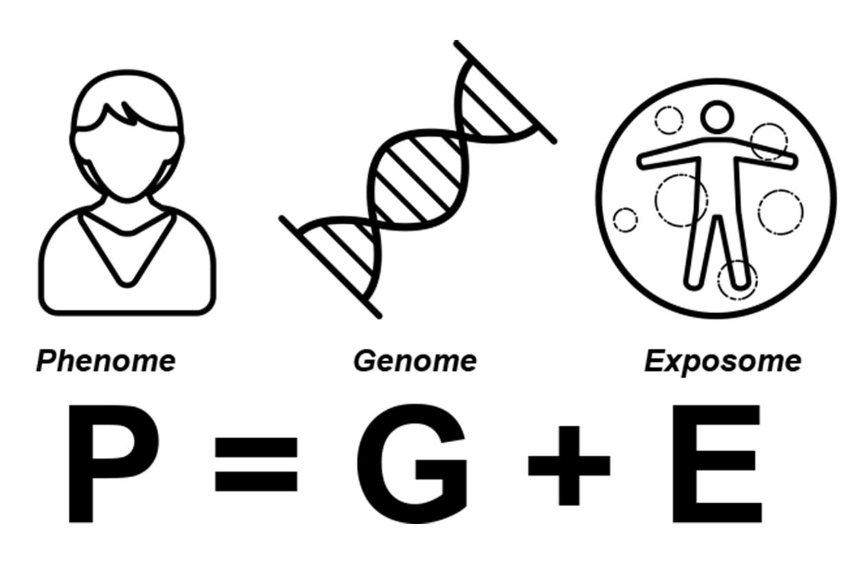 P (phenome) = G (genome) + E (exposome)