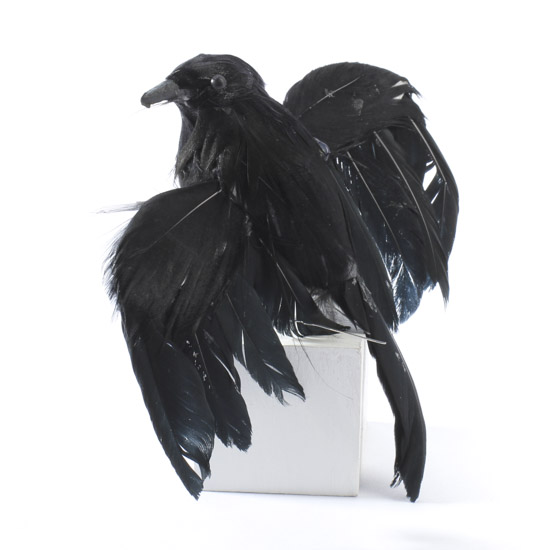 Bird Bridal Shower Invitations