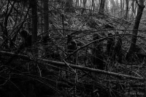 blackmetalwalpurgisnacht-0359