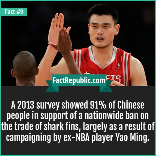 9. Yao Ming-A 2013 survey showed 91% of Chinese people in support of a nationwide ban on the trade of shark fins, largely as a result of campaigning by ex-NBA player Yao Ming.