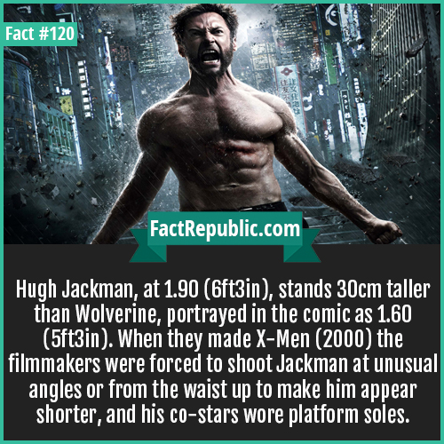 120-Hugh-Jackman-Hugh Jackman, at 1.90 (6ft3in), stands 30cm taller than Wolverine, portrayed in the comic as 1.60 (5ft3in). When they made X-Men (2000) the filmmakers were forced to shoot Jackman at unusual angles or from the waist up to make him appear shorter, and his co-stars wore platform soles.