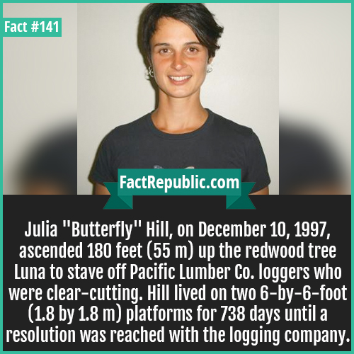 141. Julia hill-Julia 'Butterfly' Hill, on December 10, 1997, ascended 180 feet (55 m) up the redwood tree Luna to stave off Pacific Lumber Co. loggers who were clear-cutting. Hill lived on two 6-by-6-foot (1.8 by 1.8 m) platforms for 738 days until a resolution was reached with the logging company.