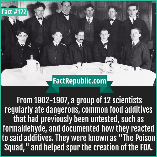 172. The poison squad-The poison squad-From 1902-1907, a group of 12 scientists regularly ate dangerous, common food additives that had previously been untested, such as formaldehyde, and documented how they reacted to said additives. They were known as 'The Poison Squad,' and helped spur the creation of the FDA.