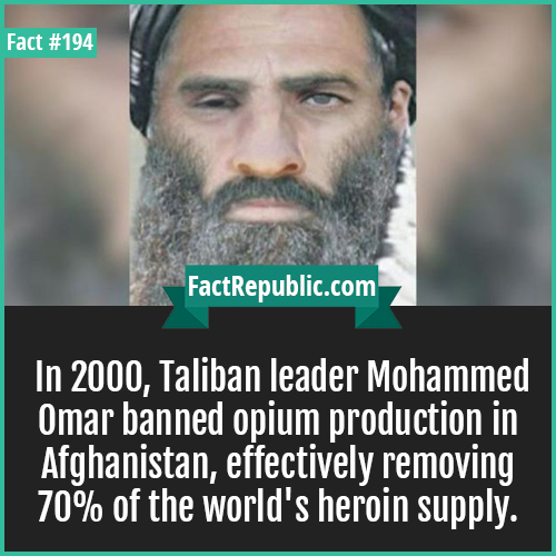 194. talibani omar-In 2000, Taliban leader Mohammed Omar banned opium production in Afghanistan, effectively removing 70% of the world's heroin supply.