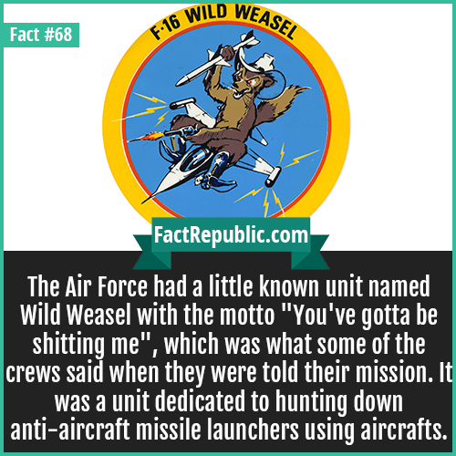 68. Wild Weasel-The Air Force had a little known unit named Wild Weasel with the motto 'You've gotta be shitting me', which was what some of the crews said when they were told their mission. It was unit dedicated to hunting down anti-aircraft missile launchers using aircrafts.