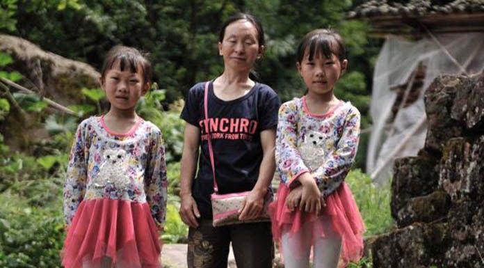 Fanshang Twins