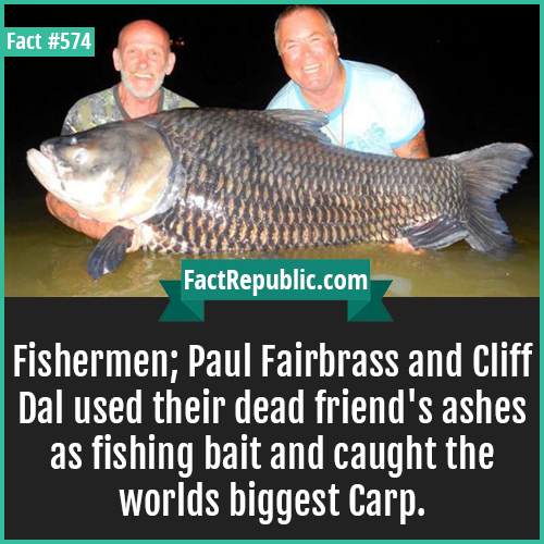 574. Fishermen-Fishermen Paul Fairbass and Cliff Dal used their dead friend's ashes as fishing bait and caught the world's biggest Carp.
