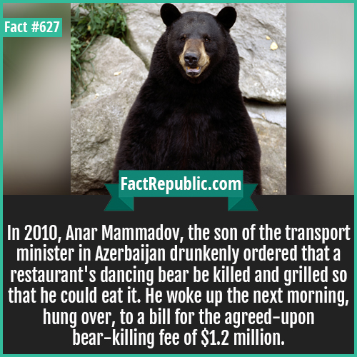 627. Bear killing deal-In 2010, Anar Mammadov, the son of the transport minister in Azerbaijan drunkenly ordered that a restaurant's dancing bear be killed and grilled so that he could eat it. He woke up the next morning, hung over, to a bill for the agreed-upon bear-killing fee of $1.2 million.