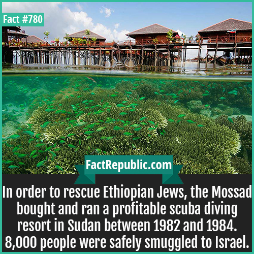 780. Sudan Scuba Resort Mossad-In order to rescue Ethiopian Jews, the Mossad bought and ran a profitable scuba diving resort in Sudan between 1982 and 1984. 8,000 people were safely smuggled to Israel.