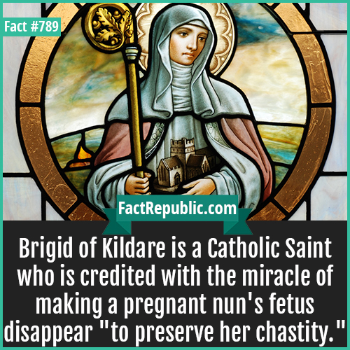 789. Brigid of Kildare-Brigid of Kildare is a Catholic Saint who is credited with the miracle of making a pregnant nun's fetus disappear