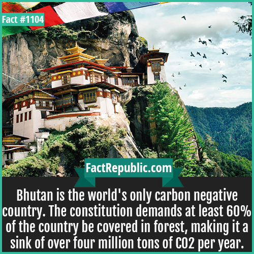 1104. Bhutan-Bhutan is the world's only carbon negative country. The constitution demands at least 60% of the country be covered in forest, making it a sink of over four million tons of CO2 per year.