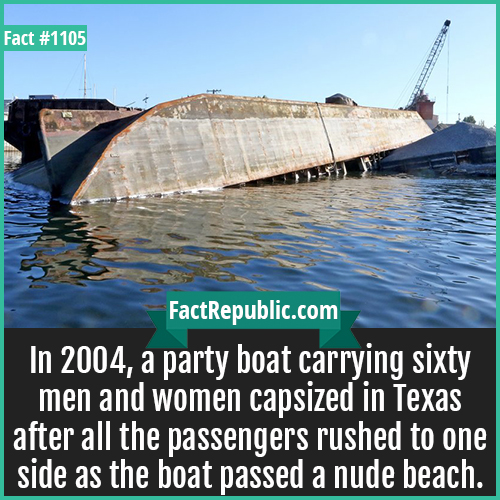 1105. Hippie Hollow Barge Sink-In 2004, a party boat carrying sixty men and women capsized in Texas after all the passengers rushed to one side as the boat passed a nude beach.