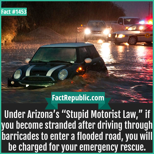 "1453. Stupid Motorist Law-Under Arizona's ""Stupid Motorist Law,"" if you become stranded after driving through barricades to enter a flooded road, you will be charged for your emergency rescue."