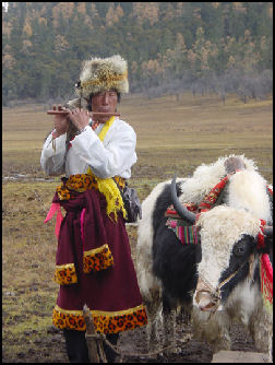 TIBETAN NOMADS Facts And Details