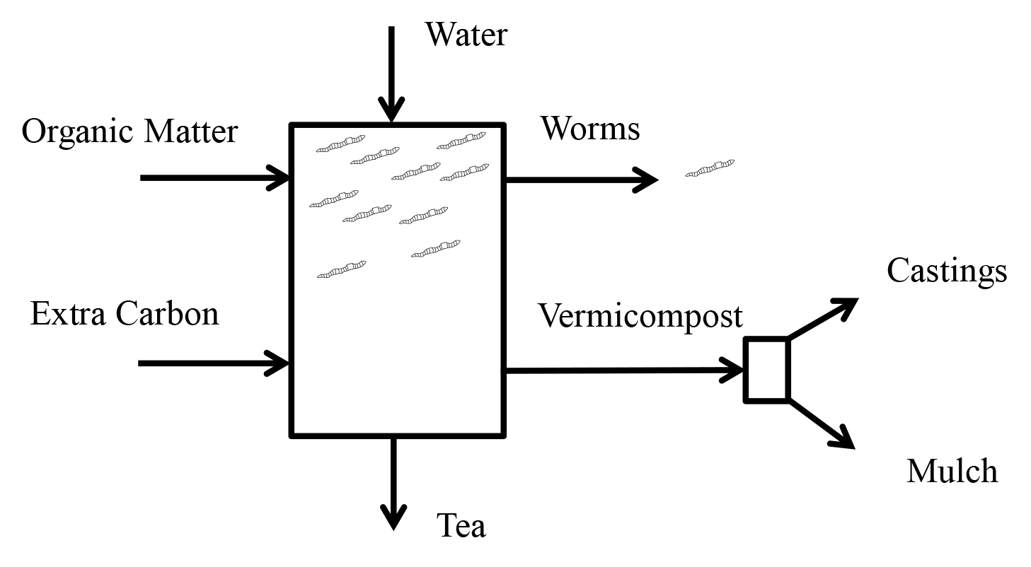 Bae The Basics Of Vermicomposting Osu Fact Sheets