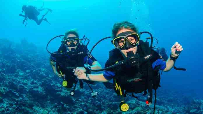 A List Of Best Diving In Indonesia For Beginners Factsofindonesia Com