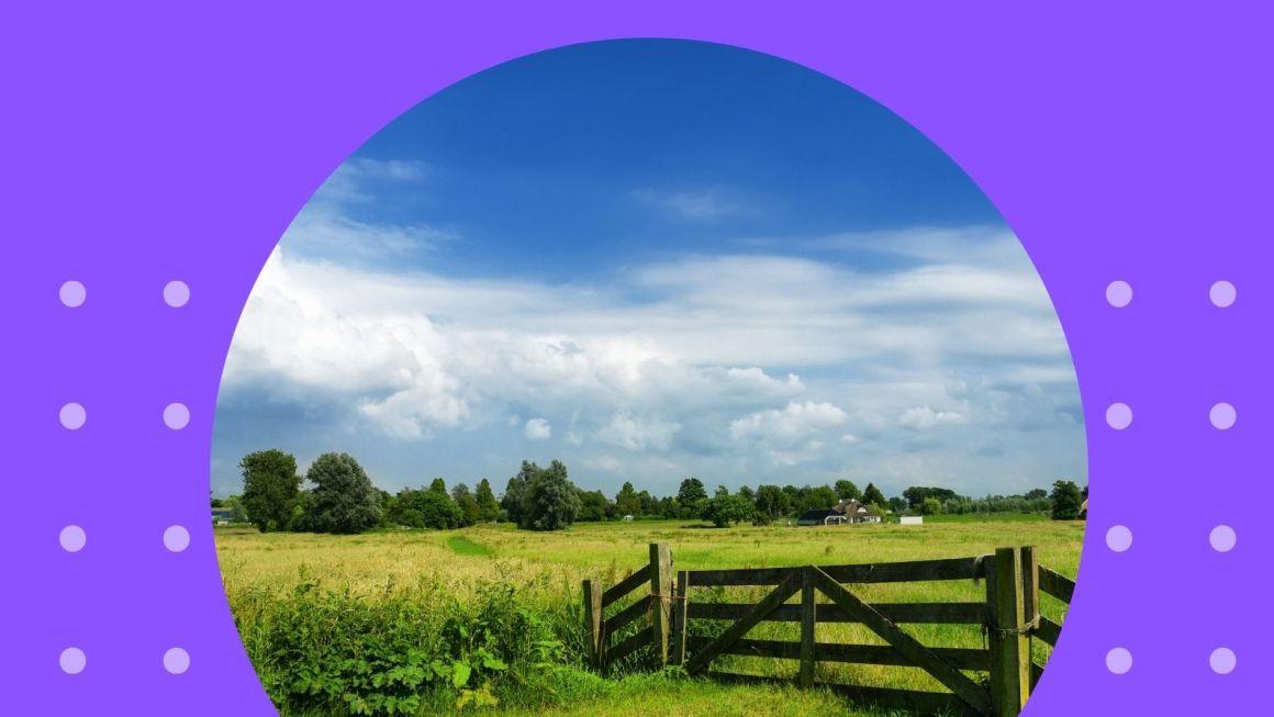 INSIREA Rural 2020
