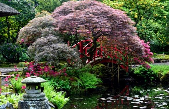 japanse tuin2