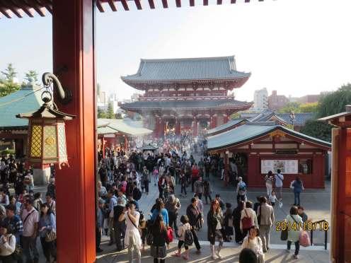 Asakusa | Fae's Twist & Tango