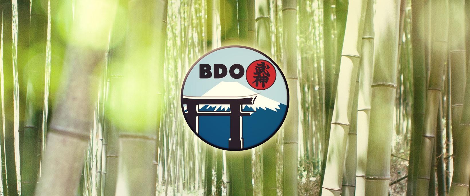 Header BDO 2