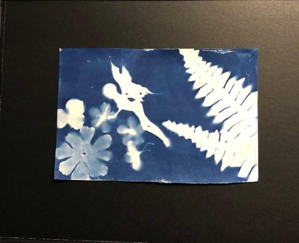 cyanotype fairy