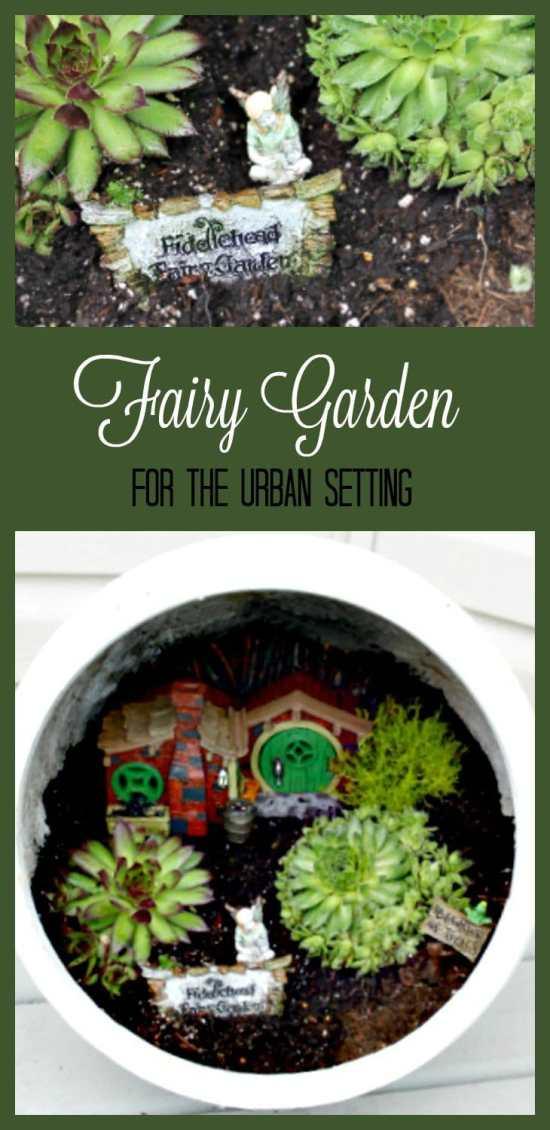 Container fairy garden, container gardening, succulents
