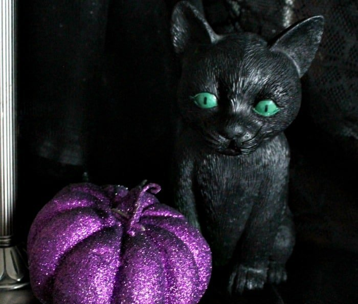 a cute black Halloween kitten. DIY witch hat, witch hat decoration ideas, hat witch designs