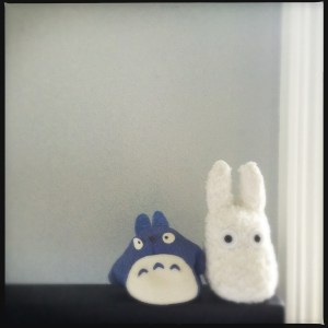 Little companions