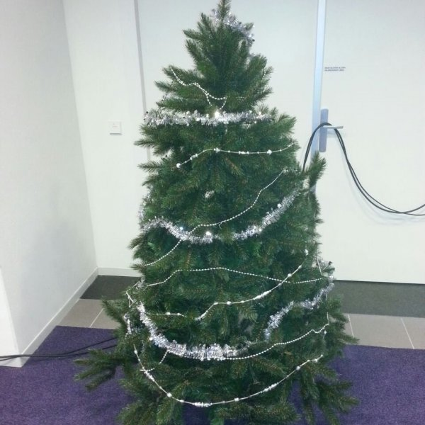 Kerstboom 2 meter