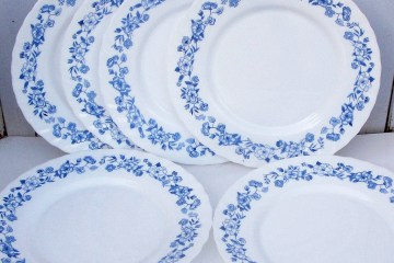 Assiettes arcopal fleurs bleues