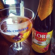 My bottle of Floris Ninkeberry fruit beer.