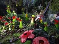 Lego plants!