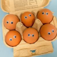 I am an egg