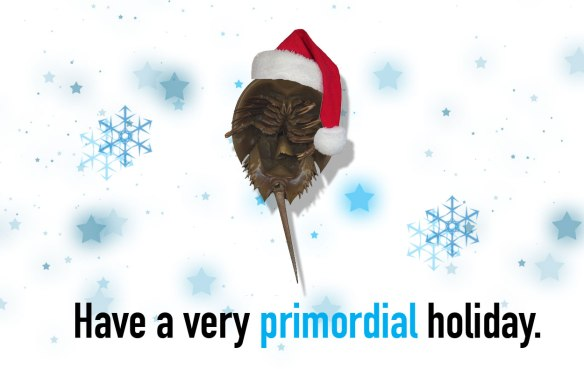 primordial-holiday