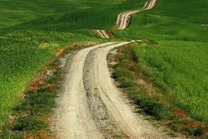 farm life-a-long-road