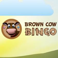 Brown Cow Bingo Casino Review (2020)
