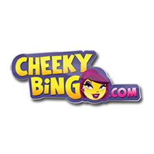 Cheeky Bingo Review (2020)