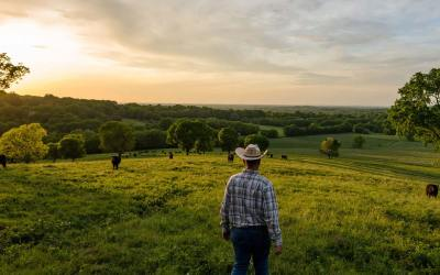 AUDIO: CEO Greg Hanes discusses how beef checkoff is being used, addresses concerns of producers