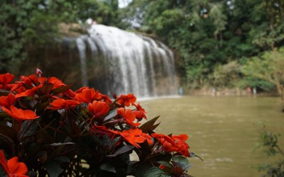Vietnam Diaries: Days 8-9 – Exploring in and around Dalat